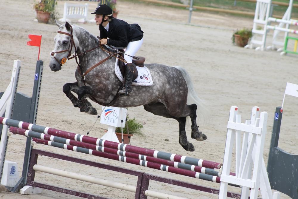 équipement équitation cso haut de gamme2