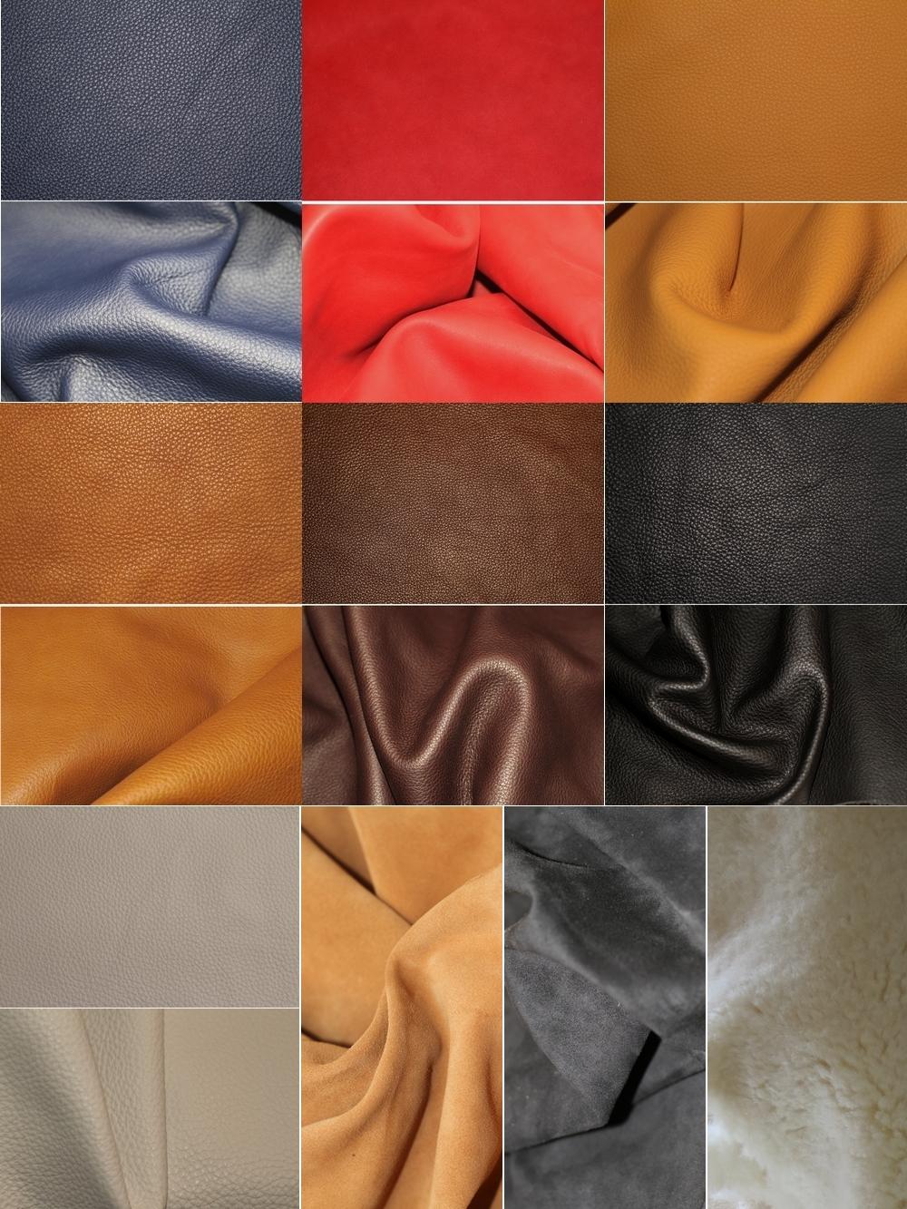 Choix ce couleur de cuirs et peausseries