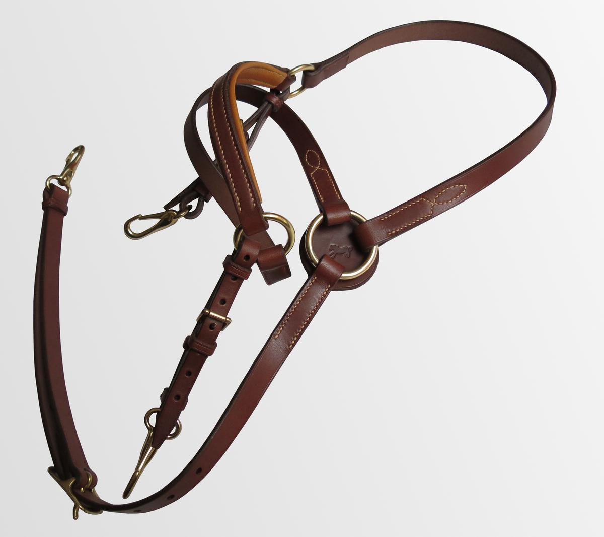 collier de chasse haut de gamme cuir