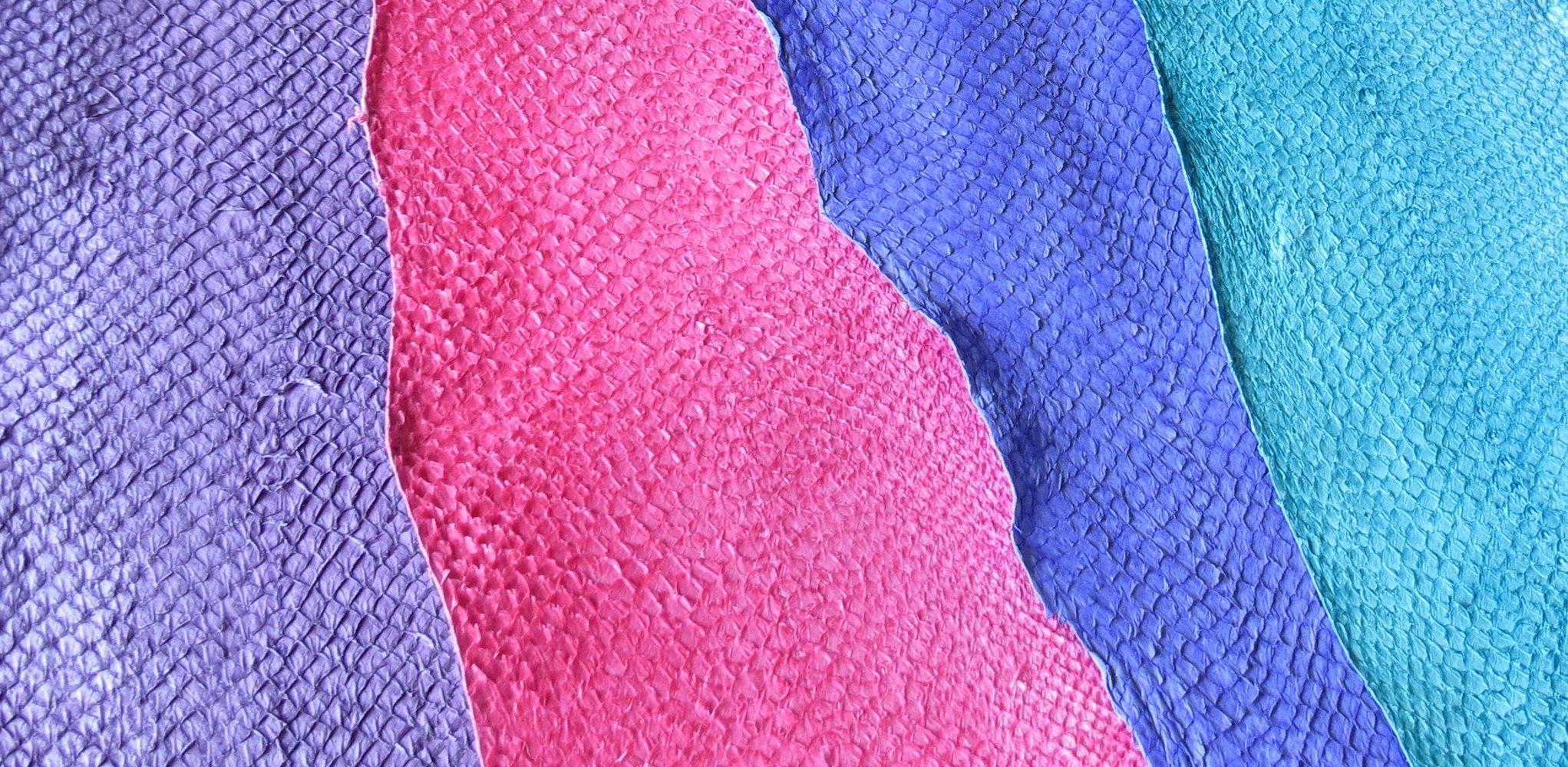 choix de couleur pour les peaux de poisson tannées