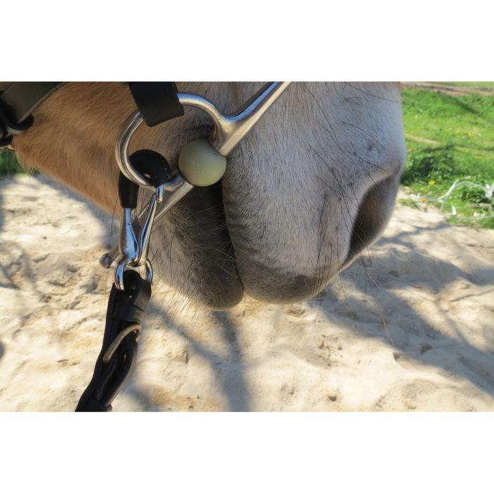 acheter mousqueton gainé de cuir cheval